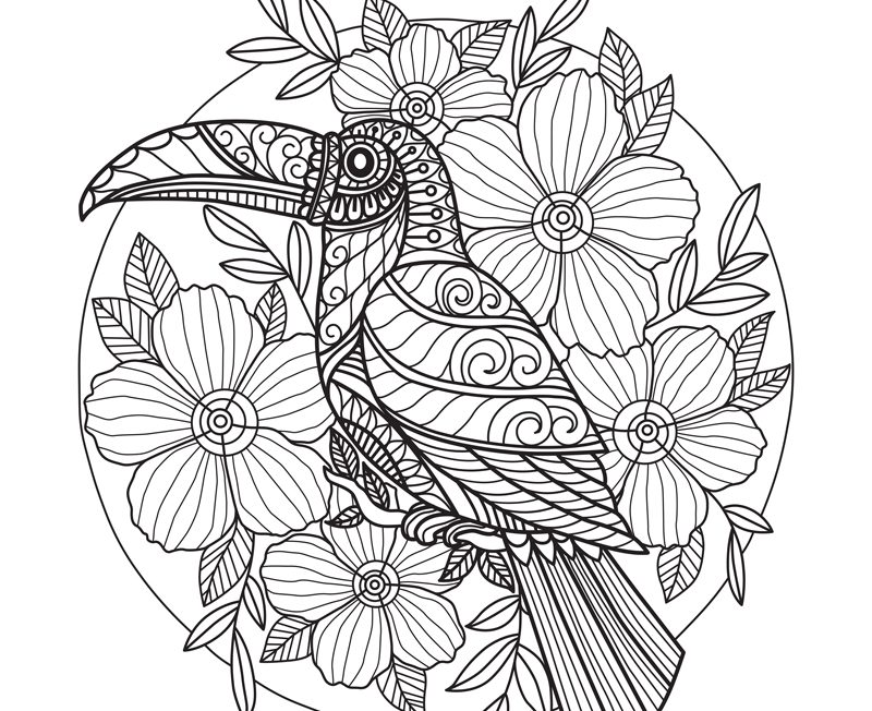 download coloring templates